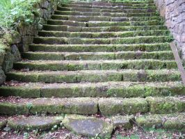 Moss Covered Steps by rosequartz