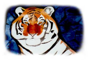 Watercolor Tiger by claycox