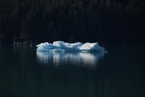 DSC03049 Iceberg, Tracy Arm by VIRGOLINEDANCER1