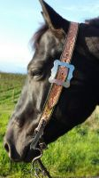Star Belt Bridle by BuildLuck