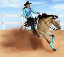 SRR too close reining entry by Wild-Rose-Ranch
