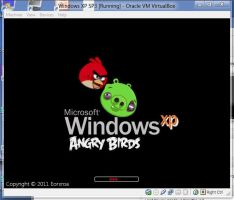 Angry Birds Boot Screen for Windows XP by Eorxroa