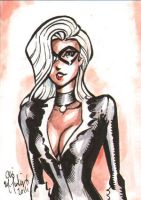 Black Cat 082811 ACEO by ChrisMcJunkin
