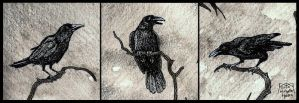 Crows (detail from 'The Crow Witch') by DarkLiminality