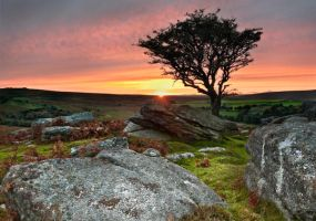 saddle tor sunset by scott-leeson