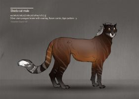 Shedu cat male 99  TintedGreen by Templado