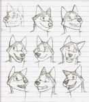 Facial expressions test sketch by topgae86turbo