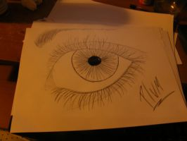 eye drawn with a birrow by plums-art