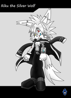 ::Update:: Riku the Silver Wolf by Xx-LordVincent-xX