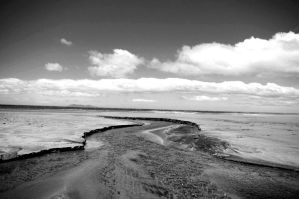 Black and white beach. by miserableink