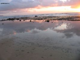 reflect hawaii by dproberts