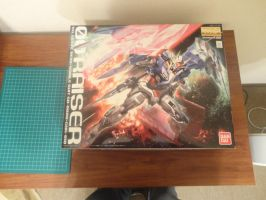 MG 00 Raiser Picture 1/? by Leimary