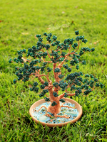 Bonsai in a bowl by beads-poet