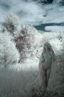IR Nude in Nature (Inverted) by rrebold