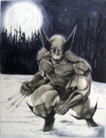 Wolverine Con Sketch HC 2010 by RichardCox
