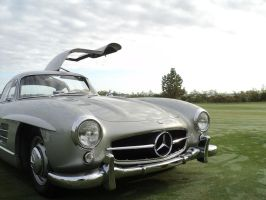 1955 300SL Gullwing by prestonthecarartist