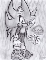 .:Rozar the hedgehog:. by FANTASY-WORKS-JMBD