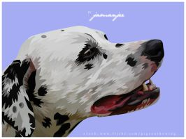 Dalmation by jamanjee