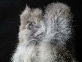 Rabbit Fur 24 by TRANS4MATICA