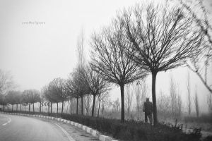 Another foggy day by pigarot