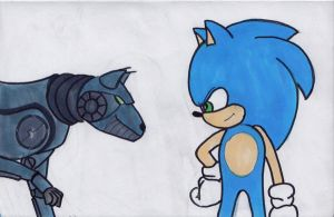Gift: Sonic and Recon by hawkeyemaverick