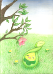 Budew by Phoelion