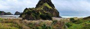 Piha Beach by Ajumska