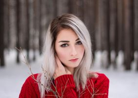 Winter portrait by Axilirator