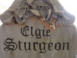 Elgie Sturgeon: Detail by thatjonesgirl