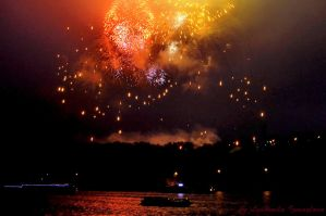 Fireworks May 9, 2012 by Lyutik966