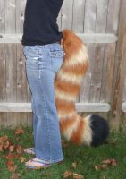 Red panda tail by Nevask