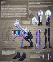 Absinthe Info Sheet by I3-byUsagi