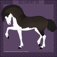 Nordanner Import 220 by Wild-Rose-Ranch