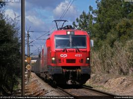 4721+4719 getting some speed 140412 by Comboio-Bolt