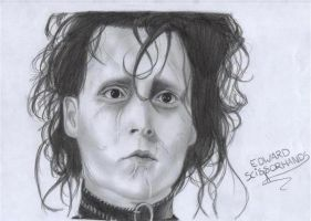 Edward Scissorhands by D17rulez