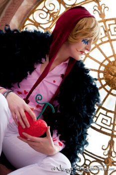 Don Quichotte Rosinante / Corazon | I by Wings-chan