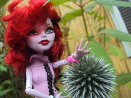 2014 - Operetta and flowers. 9 by Jessi-element