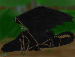 HTTYD-A Downed Dragon is a Dead Dragon by ShardianofWhiteFire