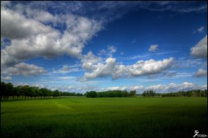 Fields of green by Chribba