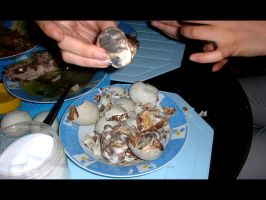 Balut - Philippine's Pride by xylvestr