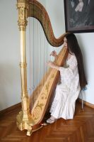 Harp stock 15 by Harpist-Stock
