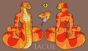 Iacul Reference Sheet by FerianMoon