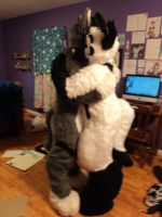 Fursuit Hug by Angelwolf92