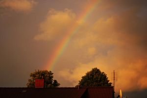 Rainbow by Emiliee91