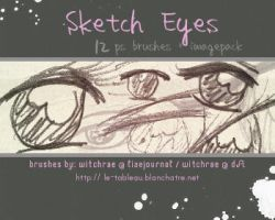 Brushes - Sketch Eyes by witchrae
