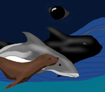 Sea Mammal Protection group by sailingseawolf