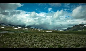 On NP Dovrefjell by MYTHAAGOO