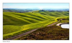 Siena Hills by Marcello-Paoli