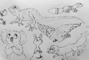 Day 8: Native Animals by StormWhiskers