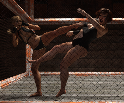 009 Chest Kick by Knockoutmichelle